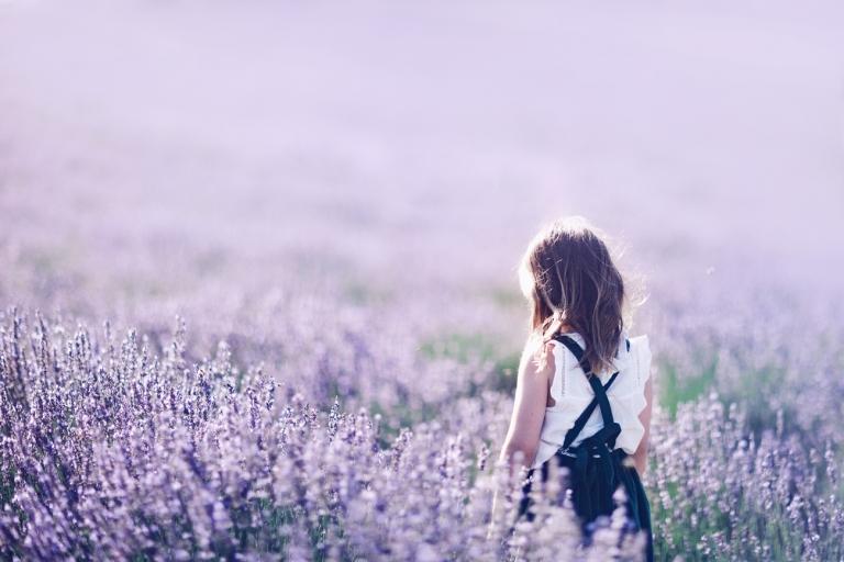 Perth Lavender Farm Photography