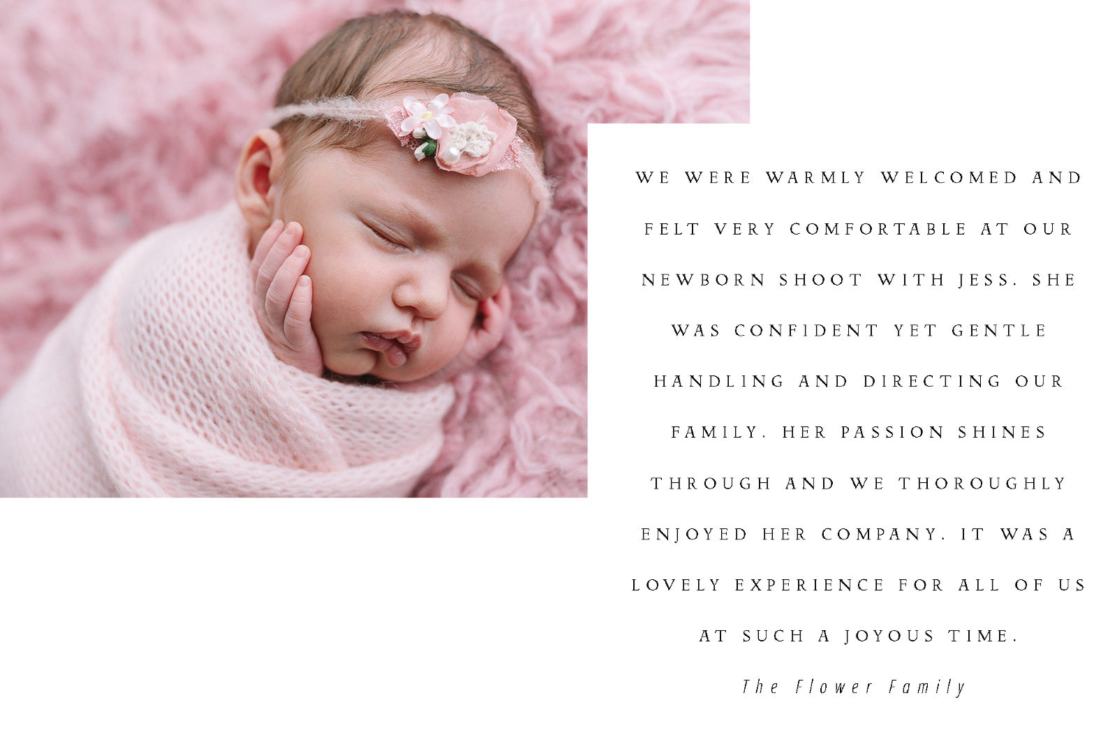 Newborn photography review
